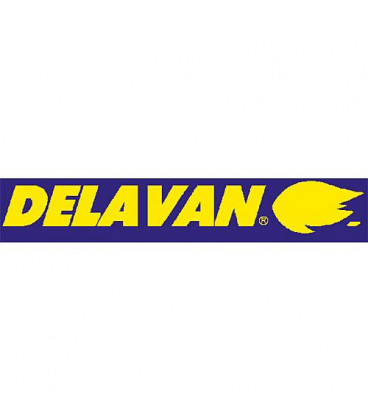 Gicleur Delavan 5,00/80°A