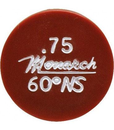 Gicleur Monarch 0,75/30°NS